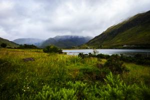 Gröna berg Isle of Skye
